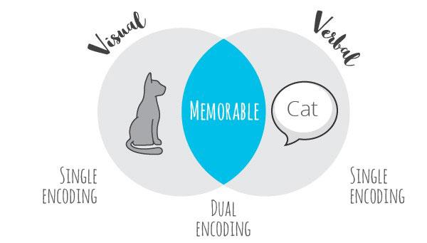 Visual versus verbal messages