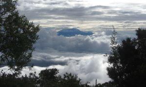 Mounti Kilimanjaro