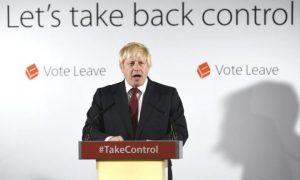 Rhetoric in the EU Referendum