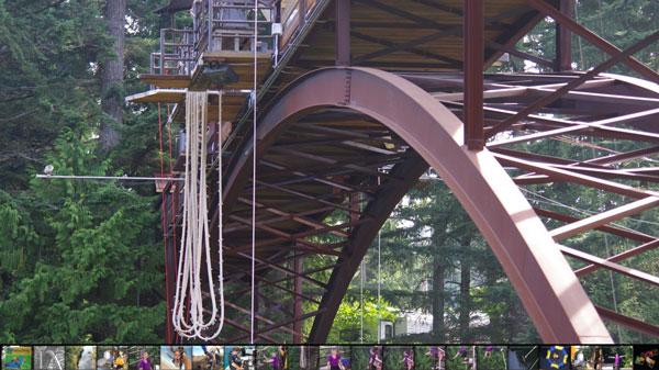 bungee jump off bridge