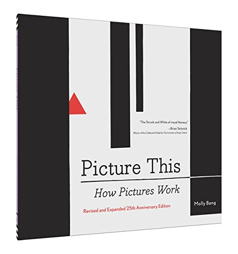 Picture-This-How-Pictures-Work-0