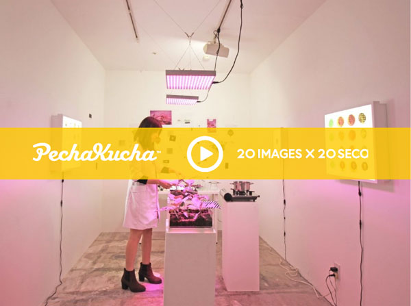 PechaKucha talk - When Art and Science Collide