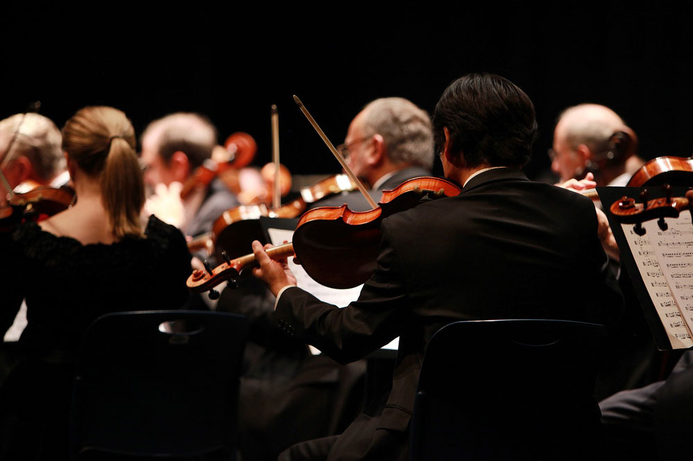 rear view of string section of orchestra performing